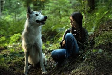 shana_wolf_wood_300dpi
